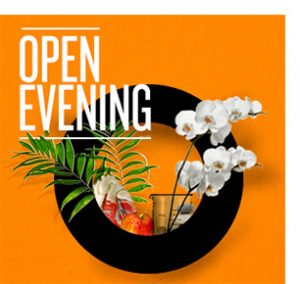 opening-evening